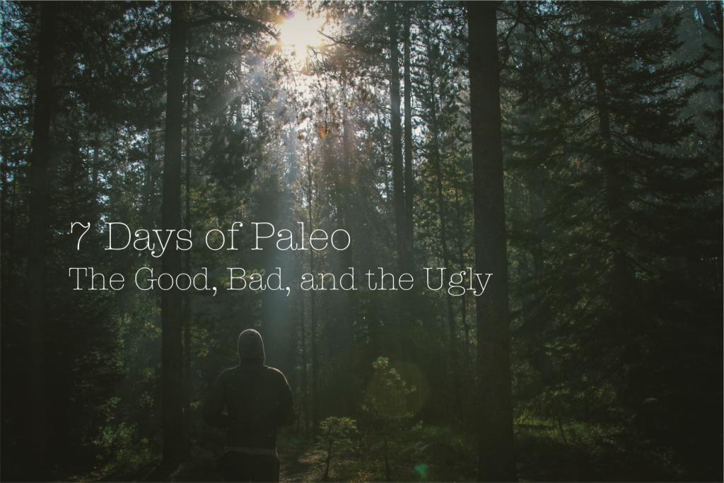 7 days of paleo